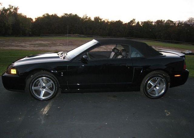 Terminator Cobra Convertible For Sale